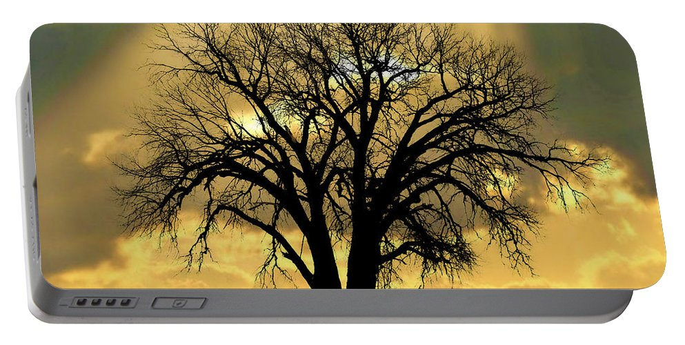 Tree Portable Battery Charger featuring the photograph All That Remains by Julie Hamilton