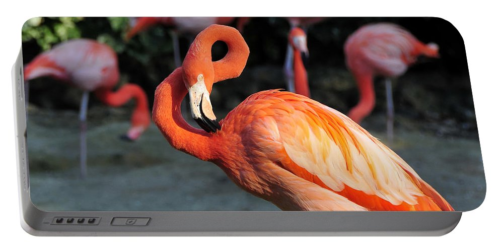 Flamingo Portable Battery Charger featuring the photograph All Twisted Up by David Lee Thompson
