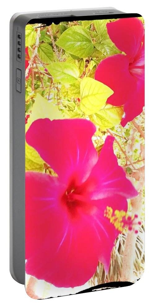 Flower Portable Battery Charger featuring the digital art Almeria Flowers by Alicia Guerrero