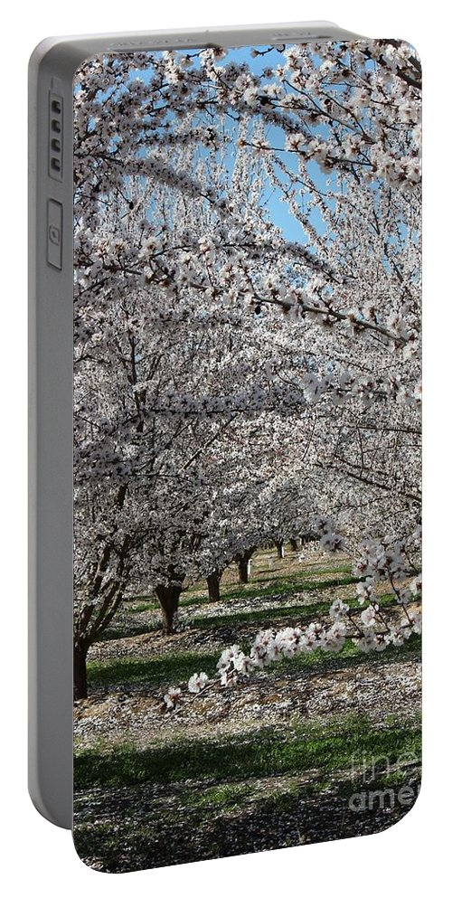Almond Portable Battery Charger featuring the photograph Almond Orchard by Marta Robin Gaughen