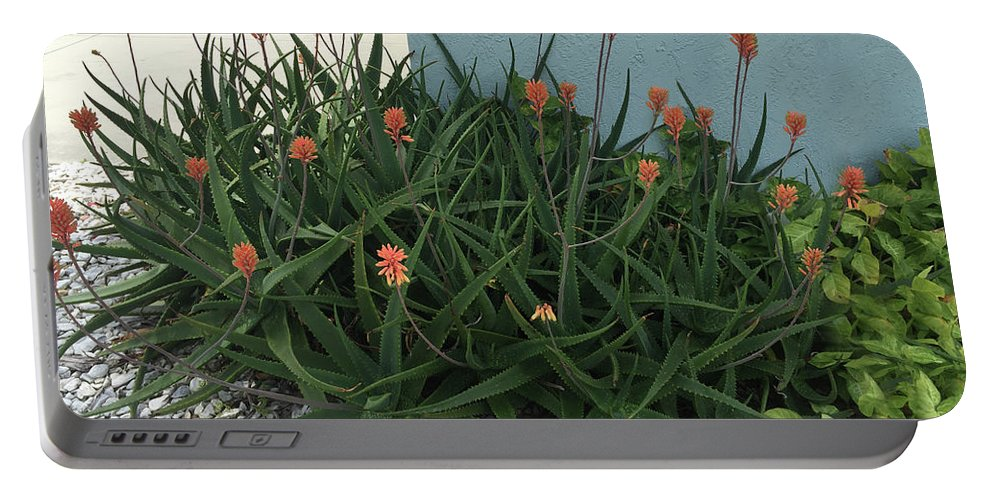 Aloe Portable Battery Charger featuring the photograph Aloe Blossoms by Aimee L Maher ALM GALLERY