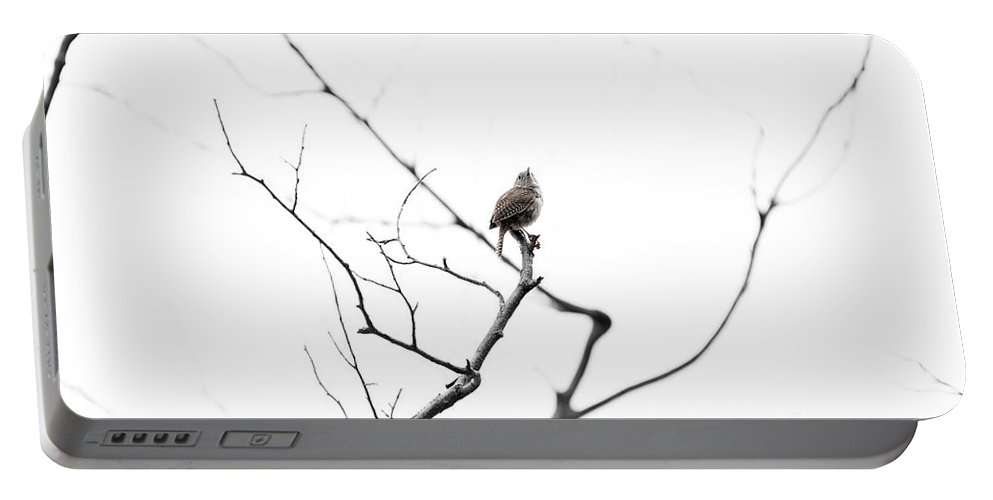 Wren Portable Battery Charger featuring the photograph Alone by Carl Saathoff