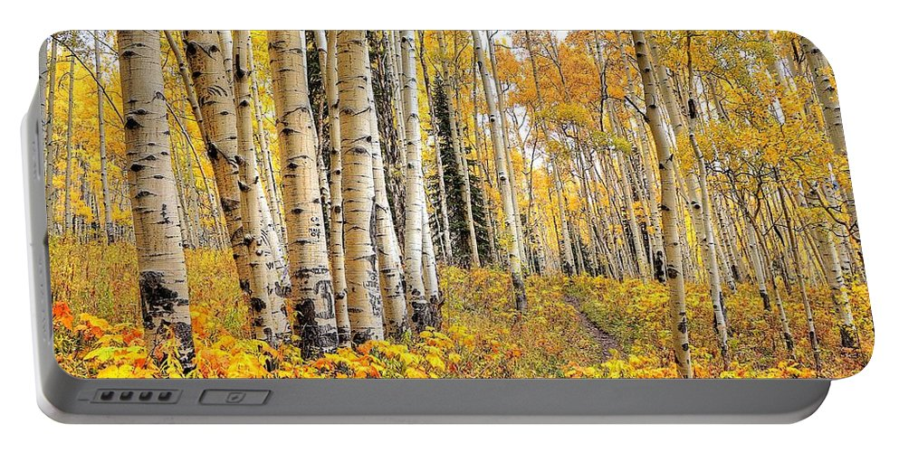Aspens Portable Battery Charger featuring the photograph Along The Path by David Ross