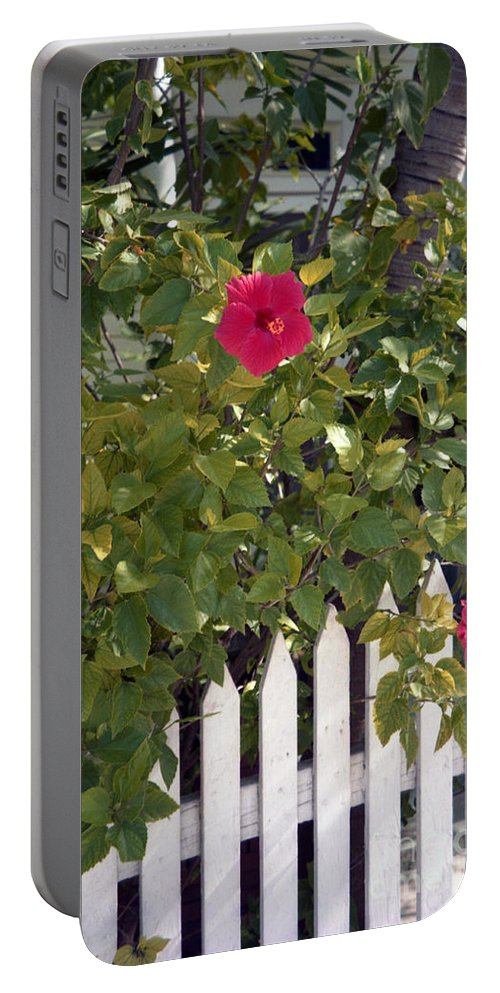 Azelea Portable Battery Charger featuring the photograph Along The Picket Fence by Richard Rizzo