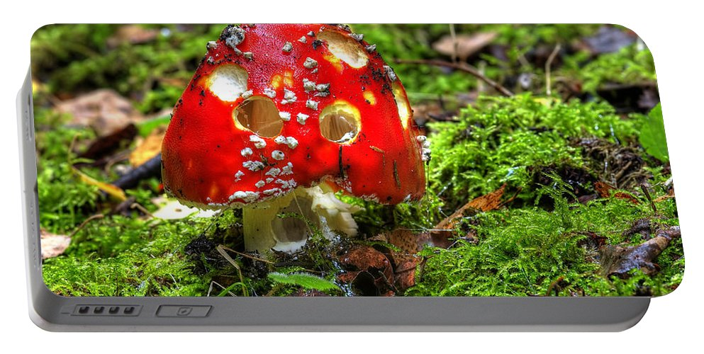Amanita Muscaria Portable Battery Charger featuring the photograph Amanita Muscaria by Michal Boubin