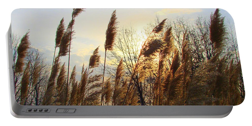 Pampasgrass Portable Battery Charger featuring the photograph Amber Waves Of Pampas Grass by J R Seymour