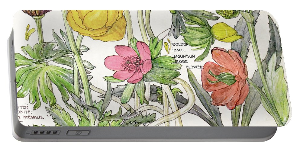 Flowers Portable Battery Charger featuring the painting Ambrosia Vi by Mindy Sommers