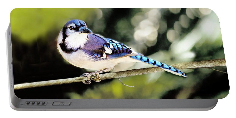 Bird Portable Battery Charger featuring the photograph American Blue Jay On Alert by Kay Brewer
