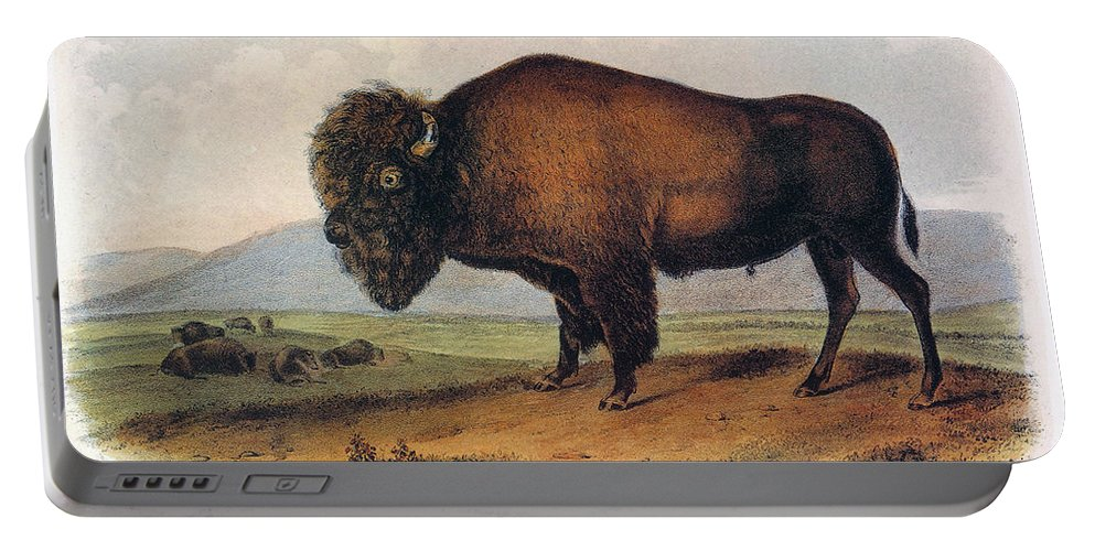 1846 Portable Battery Charger featuring the photograph American Buffalo, 1846 by John James Audubon