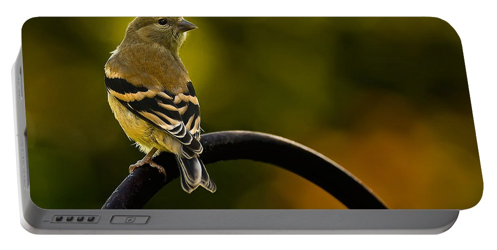Iowa Portable Battery Charger featuring the photograph American Goldfinch by Onyonet Photo Studios