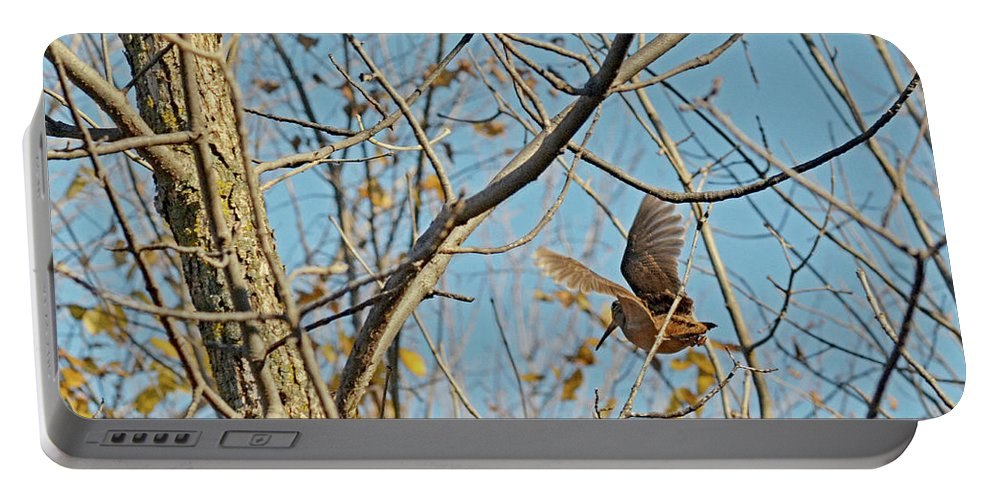 American Woodcock Portable Battery Charger featuring the photograph American Woodcock - Scolopax Minor by Asbed Iskedjian