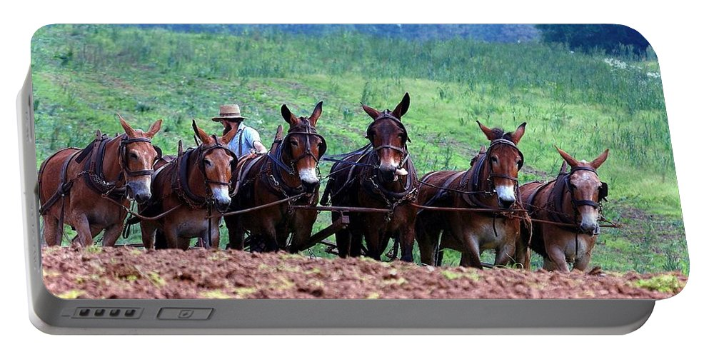Amish Portable Battery Charger featuring the photograph Amish Plowing The Fields With Mules by Randy Matthews