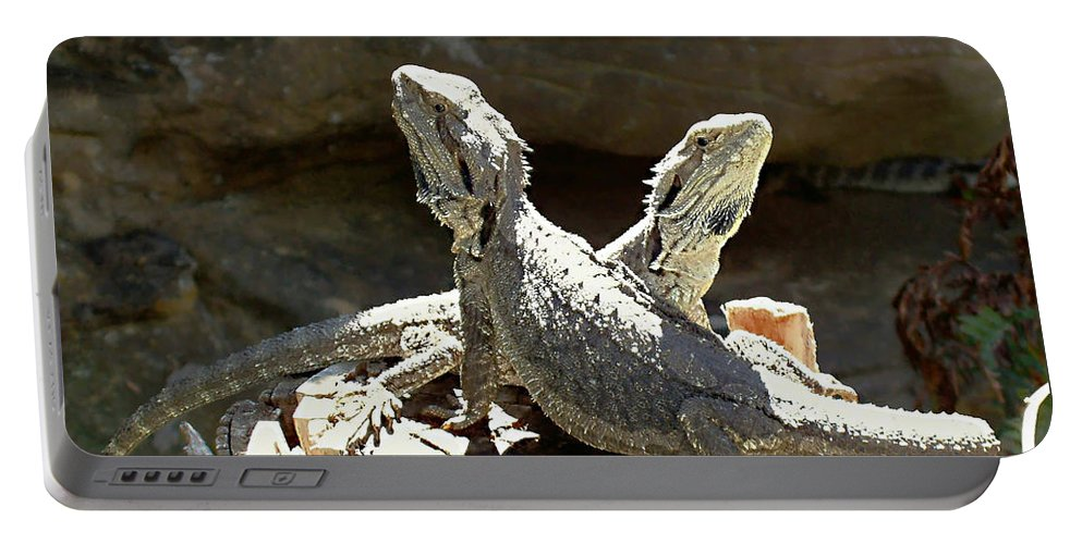 Amphion And Zethus Portable Battery Charger featuring the photograph Amphion And Zethus by Ellen Henneke