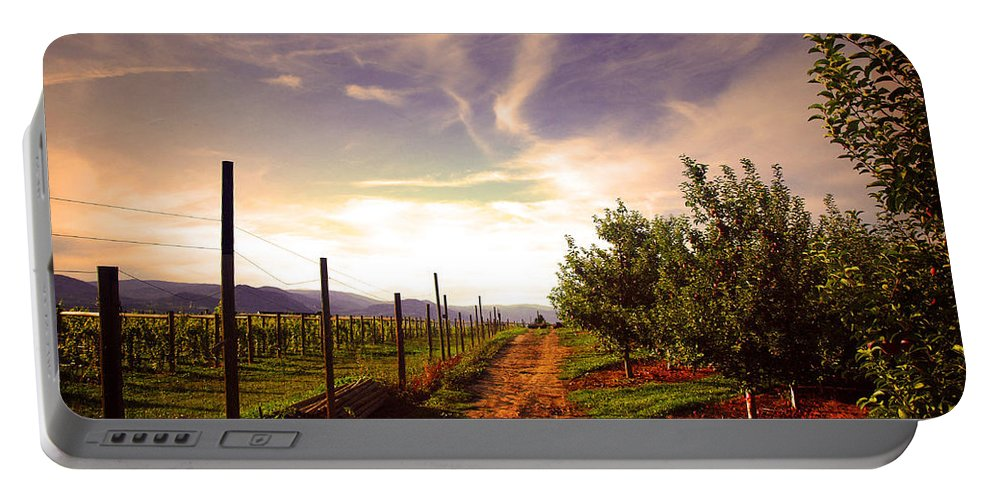 Road Portable Battery Charger featuring the photograph An Evening By The Orchard by Tara Turner