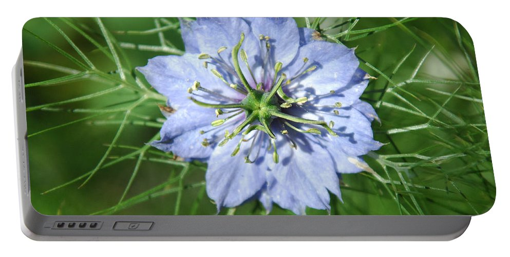 Flower Portable Battery Charger featuring the photograph An Octopusses Garden by Donna Blackhall