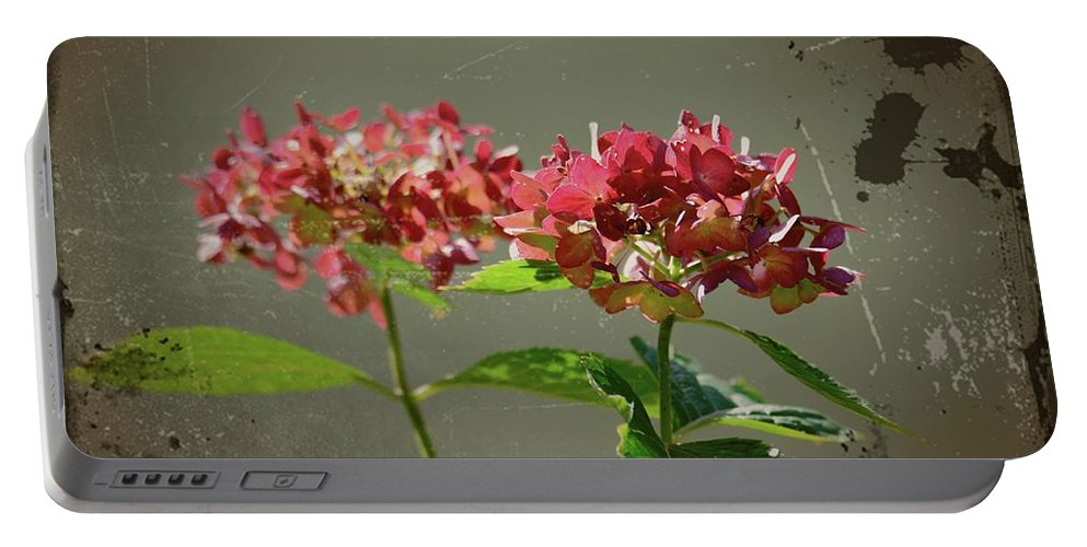 Antique Picture Of Flowers Portable Battery Charger featuring the photograph An Old Picture by Randy J Heath