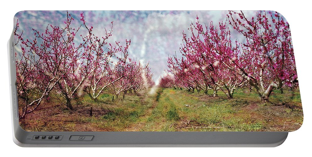 An Orchard In Blossom In The Golan Heights Portable Battery Charger featuring the photograph An Orchard In Blossom In The Golan Heights by Dubi Roman