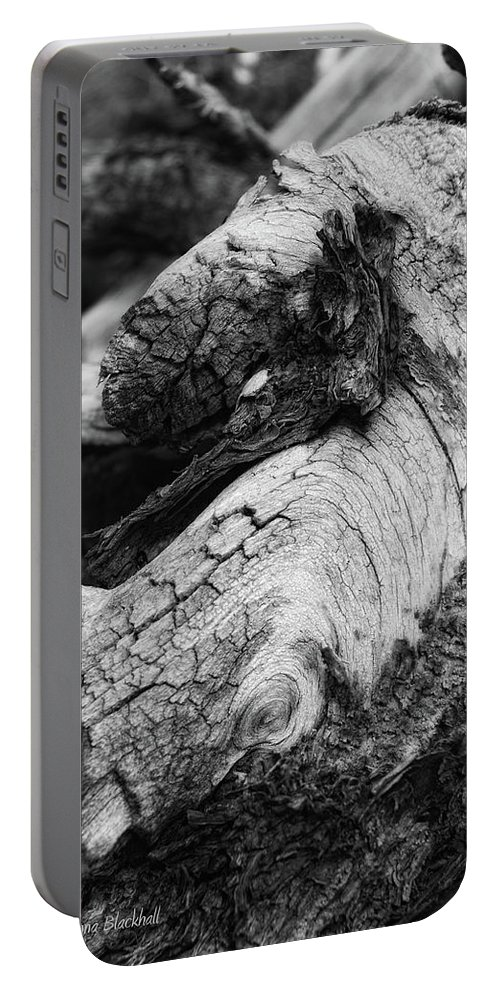 Wooden Horse Portable Battery Charger featuring the photograph Ancient Knight's Stead by Donna Blackhall