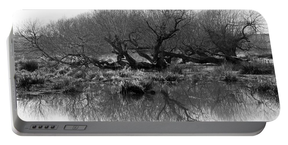 Trees Portable Battery Charger featuring the photograph Ancient Pollard Trees by Bob Kemp