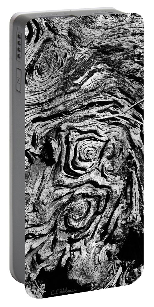 Tree Portable Battery Charger featuring the photograph Ancient Stump by Christopher Holmes