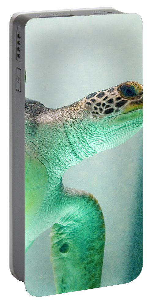 Skip Hunt Portable Battery Charger featuring the photograph Angel 2 by Skip Hunt