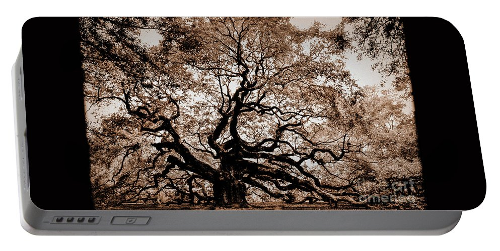 Angel Portable Battery Charger featuring the photograph Angel Oak Johns Island Sc by Yvette Wilson