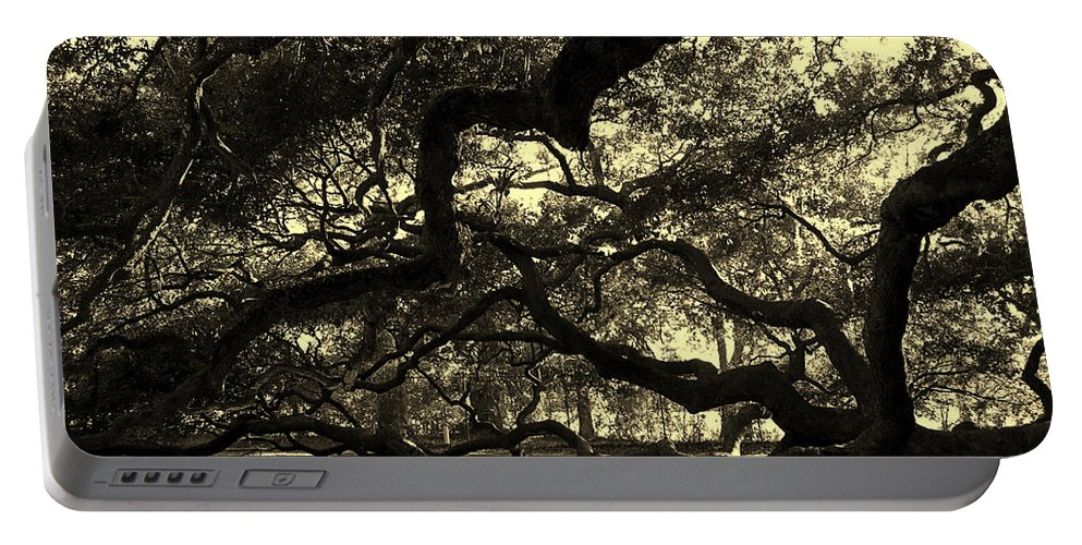 Angel Oak Portable Battery Charger featuring the photograph Angel Oak Limbs Sepia by Susanne Van Hulst