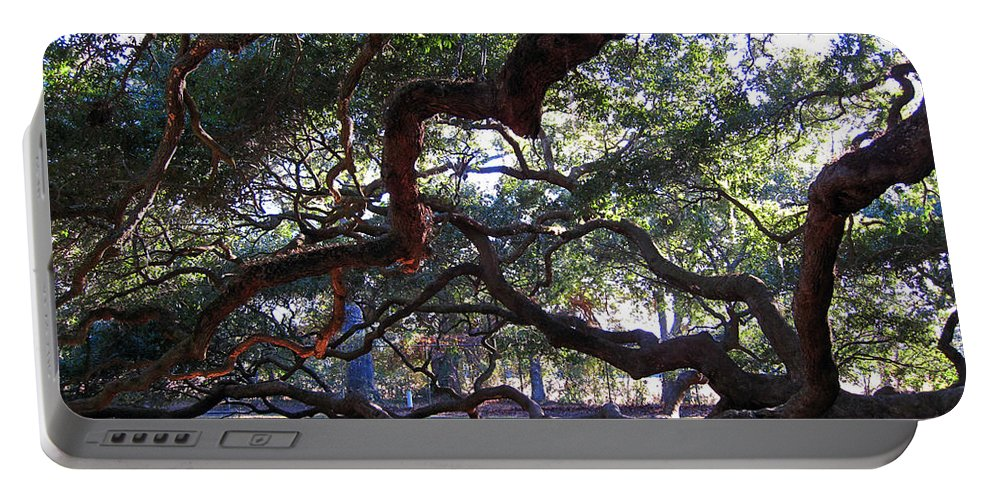 Photography Portable Battery Charger featuring the photograph Angel Oak Side View by Susanne Van Hulst
