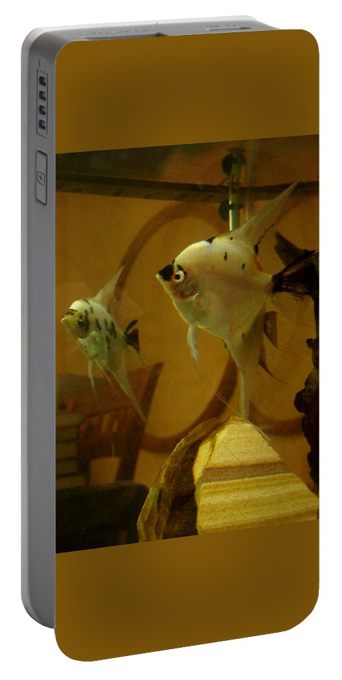 Tropical Fish Portable Battery Charger featuring the photograph Angelfish Reflections by Sarah Houser