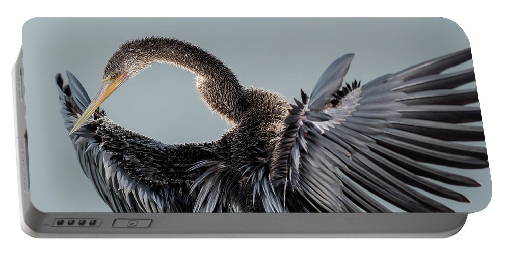 Anhinga Portable Battery Charger featuring the photograph Anhinga Sunning by George DeCamp