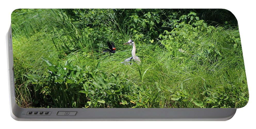 Marsh Portable Battery Charger featuring the photograph Annoyed - Heron and Red Winged Blackbird 5 of 10 by Colleen Cornelius