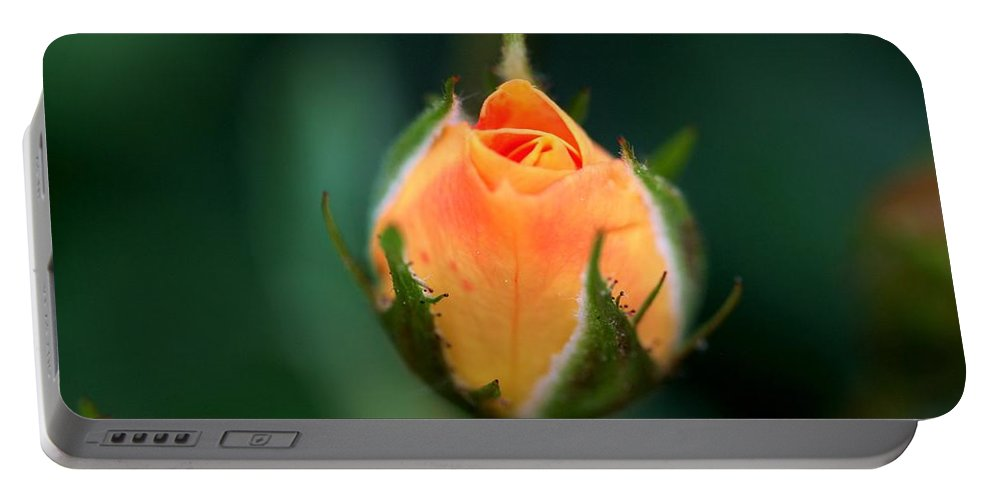 Rose Portable Battery Charger featuring the photograph Apricot Rose Bud 1 by Kristina Jones