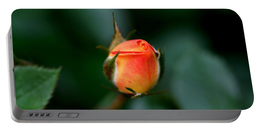 Rose Portable Battery Charger featuring the photograph Apricot Rose Bud 2 by Kristina Jones