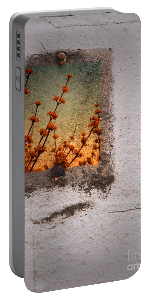 Blossoms Portable Battery Charger featuring the photograph April 4 2010 by Tara Turner