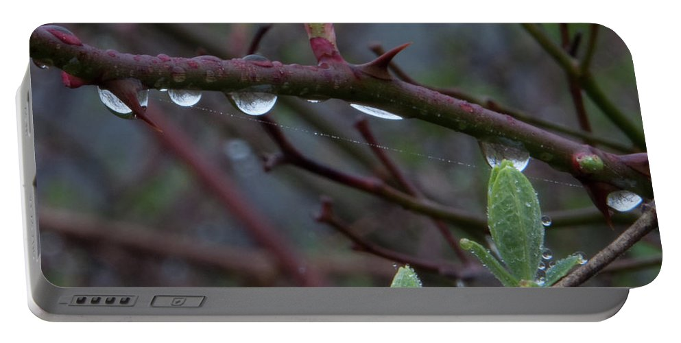 Photography Portable Battery Charger featuring the photograph April Showers by Steven Natanson