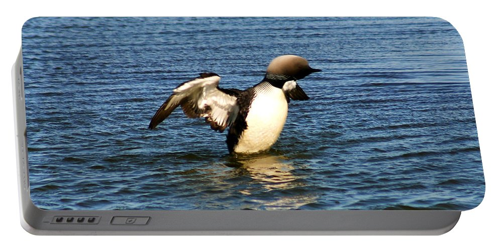 Loon Portable Battery Charger featuring the photograph Arctic Loon by Anthony Jones
