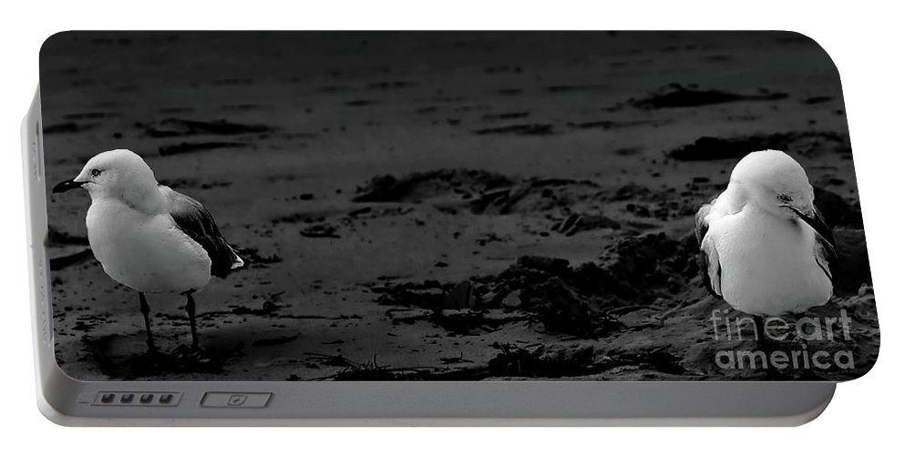 Digital Black And White Photo Portable Battery Charger featuring the photograph Area Sweep Bw by Tim Richards