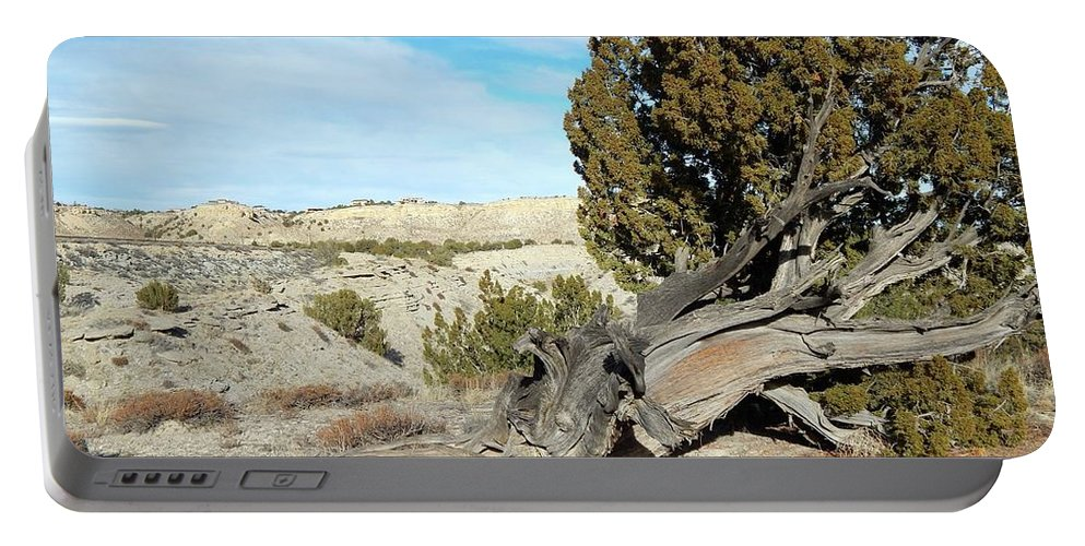 Landscape Portable Battery Charger featuring the photograph Arid Beauty by Viki Velazquez