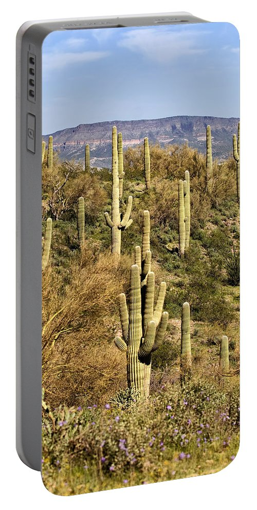 Saguaro Portable Battery Charger featuring the photograph Arizona Desert by Renee Hong
