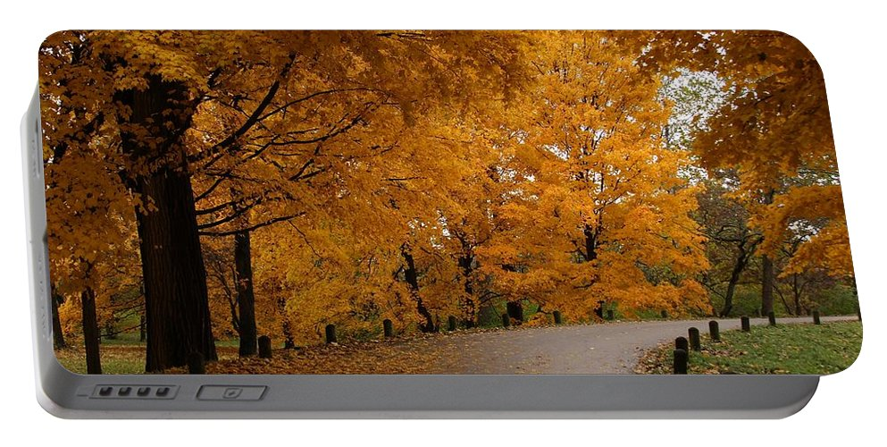 Leaves Portable Battery Charger featuring the photograph Around The Bend by Lyle Hatch