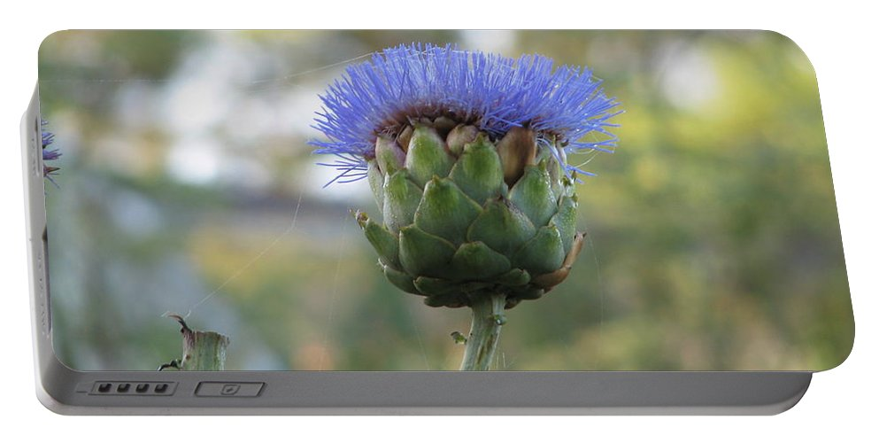 Artichoke Portable Battery Charger featuring the photograph Artichoke by Kelly Mezzapelle