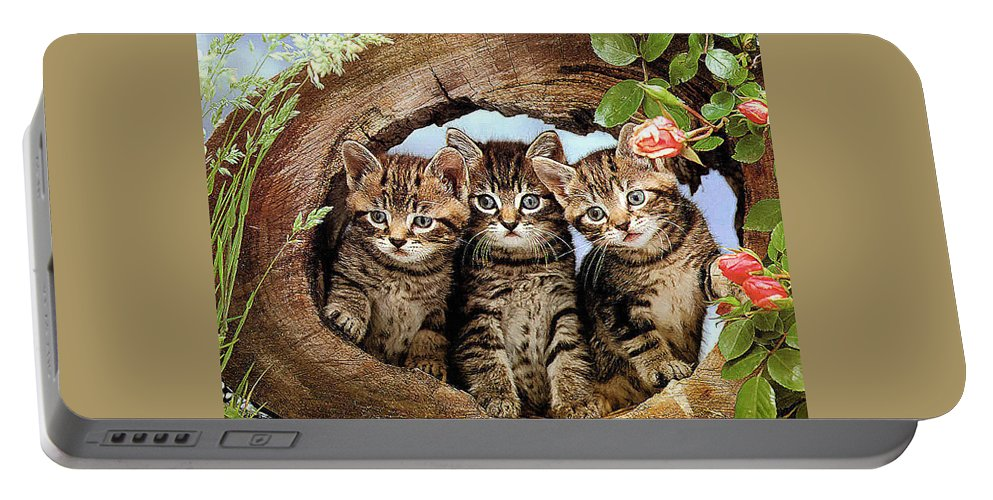 Adorable Cat Portable Battery Charger featuring the painting Three Cats by Engy Khalil