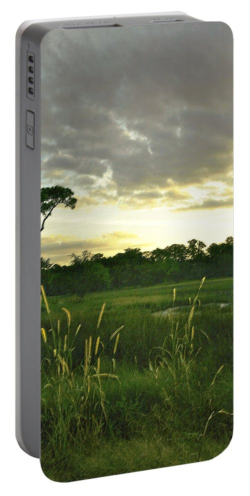 Sunrise Portable Battery Charger featuring the photograph Artistic Lush Marsh by Phill Doherty
