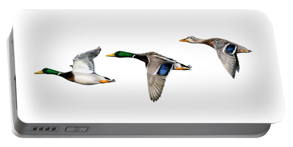 Mallard Ducks Portable Battery Charger featuring the painting Flying Mallards by Sarah Batalka