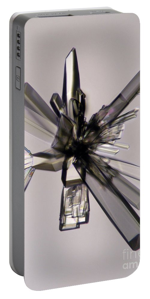 Ascorbic Acid Portable Battery Charger featuring the photograph Ascorbic Acid Crystal by Raul Gonzalez Perez