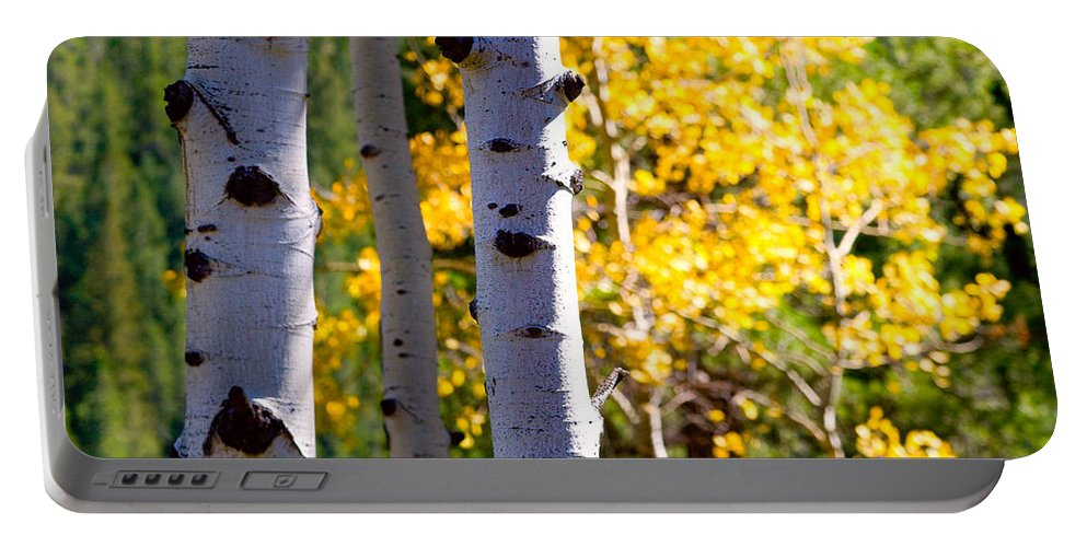 Aspens Portable Battery Charger featuring the photograph Aspen Color by James BO Insogna