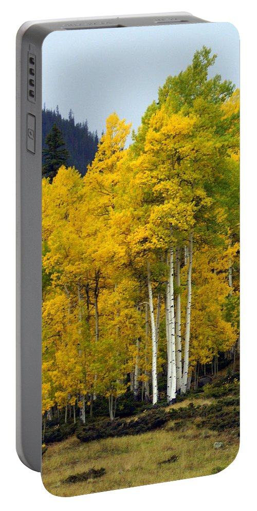 Fall Colors Portable Battery Charger featuring the photograph Aspen Fall 3 by Marty Koch