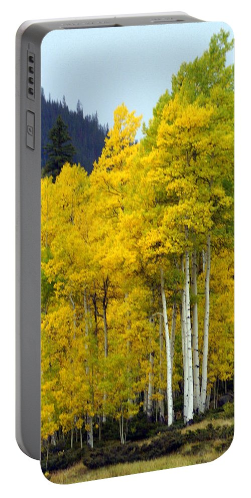 Fall Colors Portable Battery Charger featuring the photograph Aspen Fall by Marty Koch