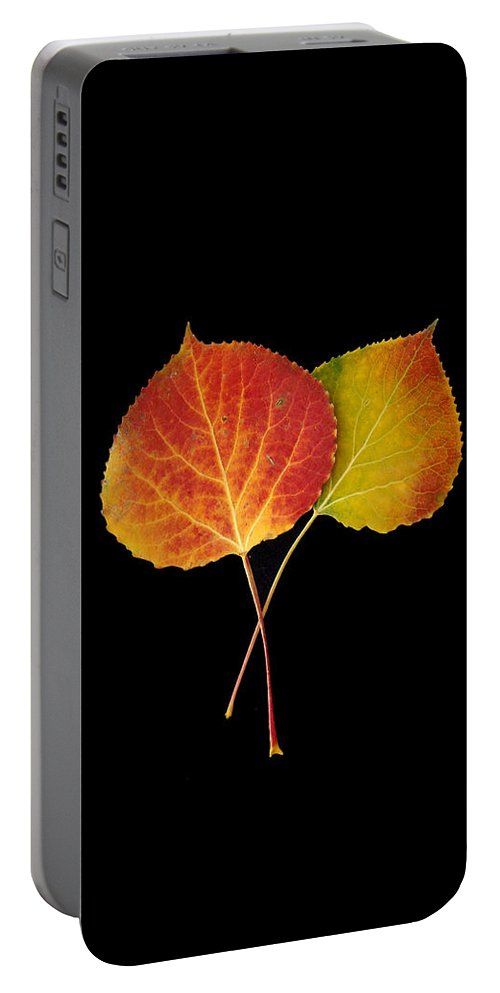 Leaves Portable Battery Charger featuring the photograph Aspen Leaves by Carol Milisen