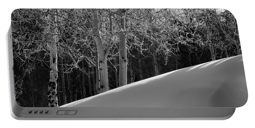 Colorado Portable Battery Charger featuring the photograph Aspencade by Skip Hunt